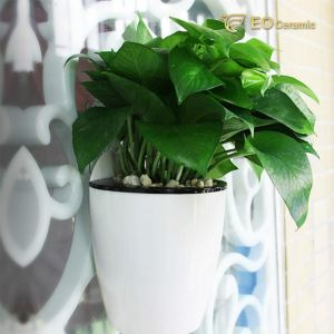 Hanging Ceramic Plant Pot